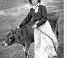 jersey-milkmaid-and-cow