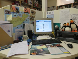 My desk, how many Puffins can you see?