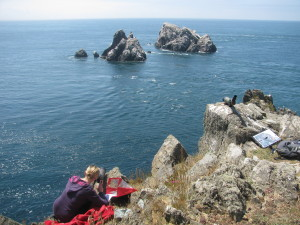 Vicky monitoring the Gannets on a sunny afternoon
