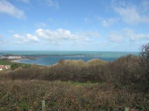 A view from the Alderney Community Woodland; even from our terrestrial landscapes the sea isn´t far away!