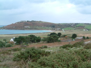 Habitats on the reserve include: gorse (foreground), reedbed (middle right) around a pond, grass fields, sand dunes and beach with intertidal area and tree planting area to become part of the woodland (hillside in distance)
