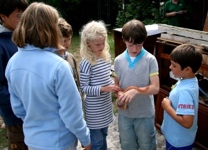 Henry showing the group a corn snake