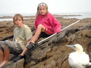 Deborah and her brother Jack have just helped rescue a gannet...