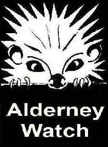 Alderney Watch have a blonde hedgehog for their logo