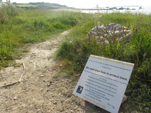 Ringed plover protection signs are located on the entrances to Platte Saline beach