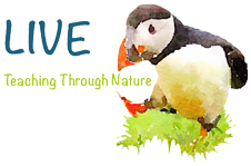 LIVE: Teaching Through Nature Retina Logo