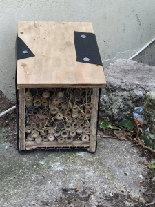 A bug box made by AWT!